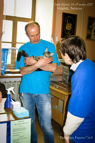 catshow_vitebsk_may_2011_10